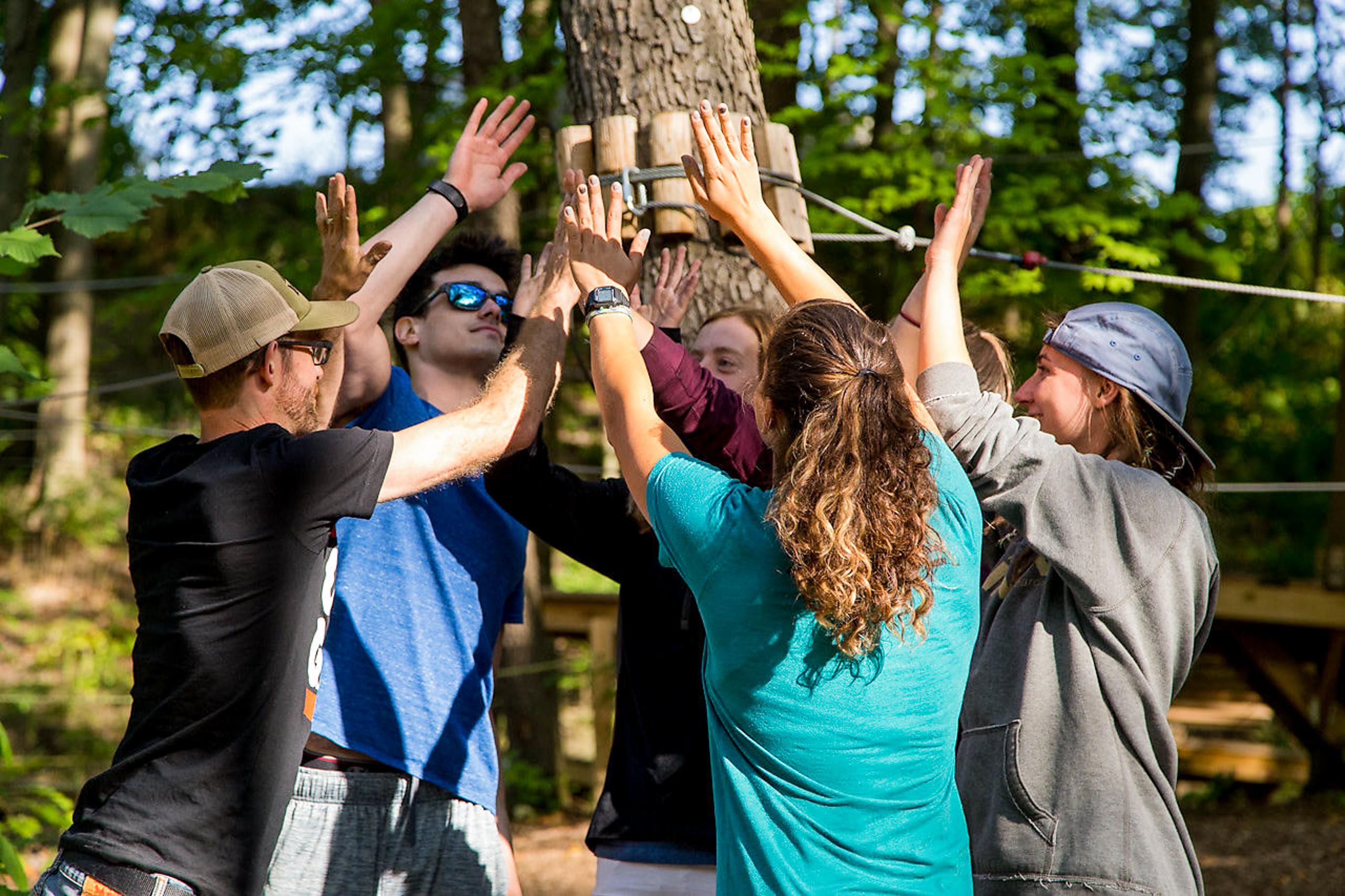 Team Building - Outdoor Adventure I TreeRunner West Bloomfield