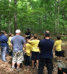 Teaching proper tree climbing from Tree Tech Tree Service