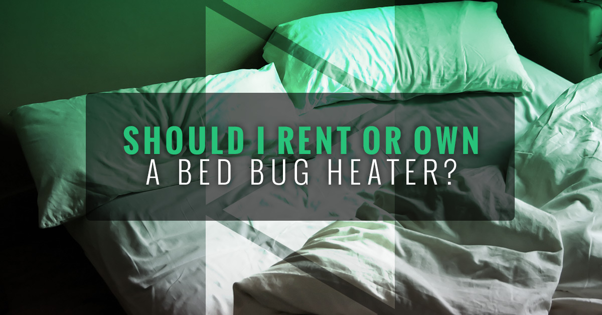 electric bed bug heaters