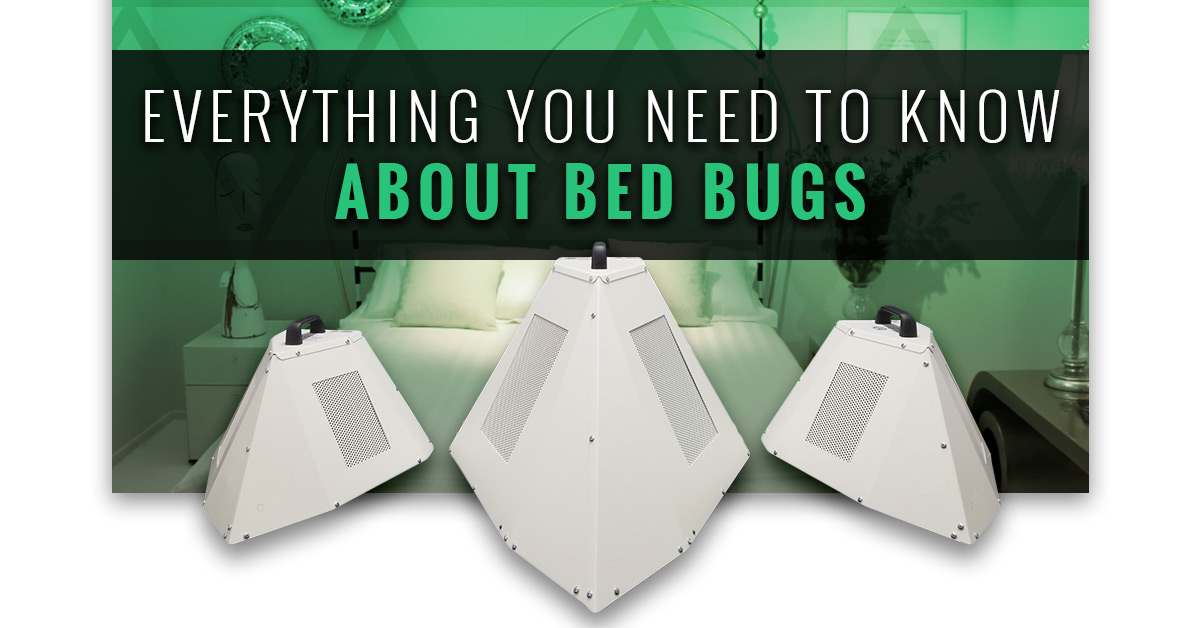 Commercial Bed Bug Heaters Everything You Need To Know