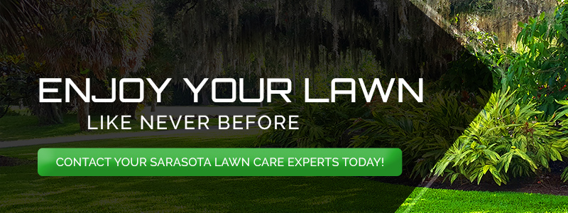 enjoy your lawn like never before