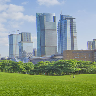 A large expanse of grass leads up to a dense gathering of trees, with skyscrapers in the distance.
