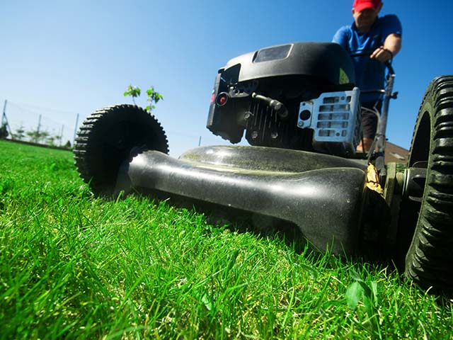 Turf Fox is different from the other Sarasota lawn care providers