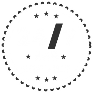 24/7 Emergency Security Service Logo