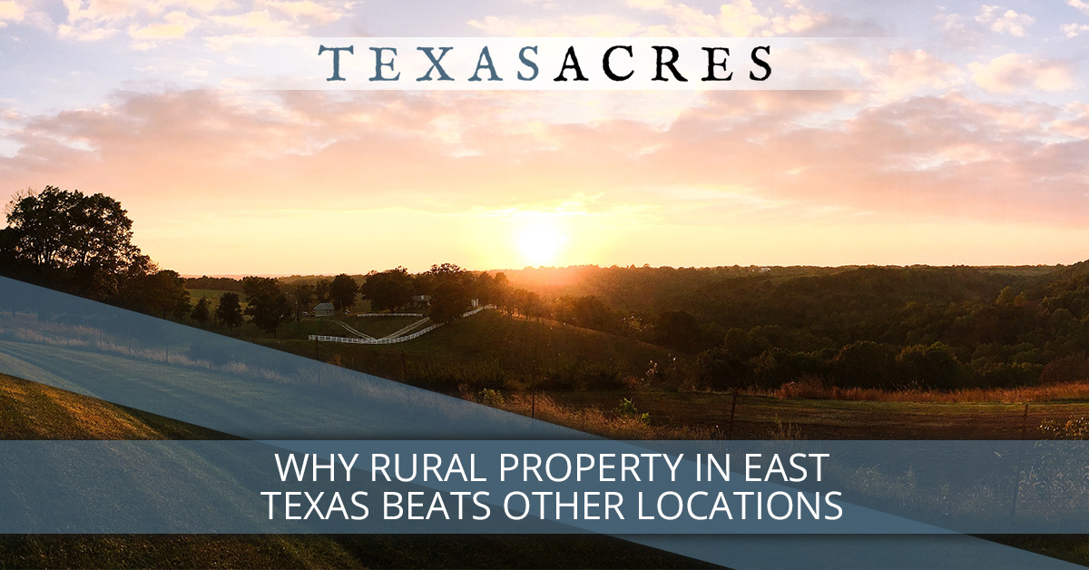 Rural Property: Why East Texas Beats Other Locations