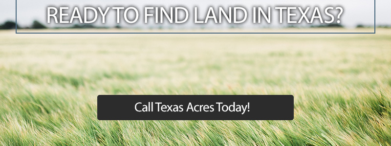 Call to action button showing grassy land in Texas.