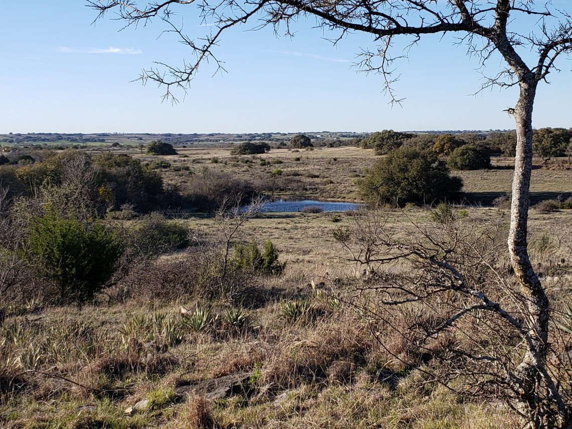 Owner Financed Land For Sale - Proctor, TX | Texas Acres