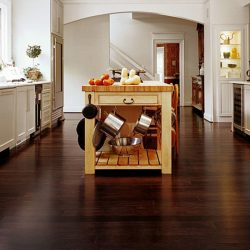Dark cherry kitchen floor from USG
