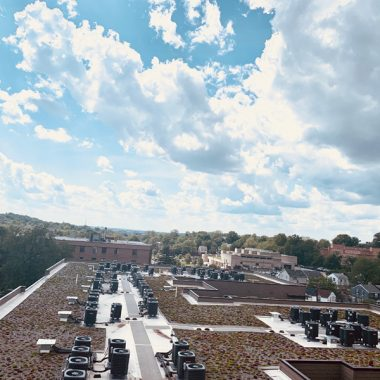 Dean Woods Apartments 'Green Roof'