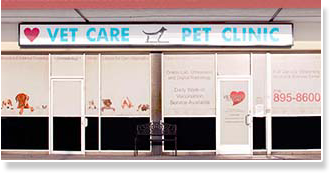 Veterinary Services Garden Grove Spay And Neuter Ca Veterinary Hospital 92845 Vetcare Pet