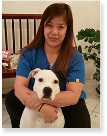 Veterinary Services at VetCare