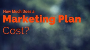 How much does a Marketing Plan cost