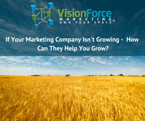 If Your Marketing Company Isn't Growing -  How Can They Help You Grow?