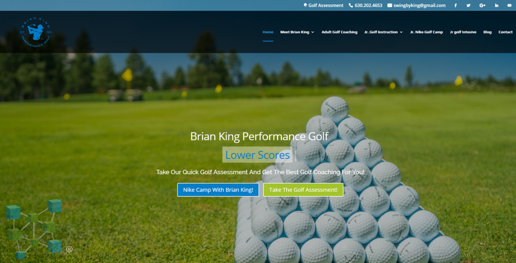 Brian King website Example