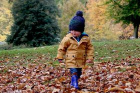 Toddler in fall clothing a wool cap, playing in leaves outside