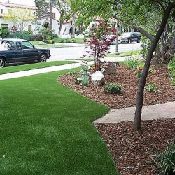 Image showcasing waterless turf on a property edged up