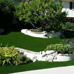 Image of turf among a house's landscaping efforts