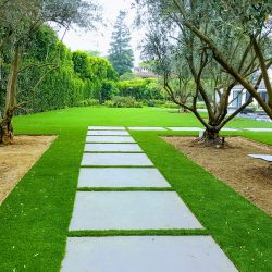 Image of concrete walkway with turf borders