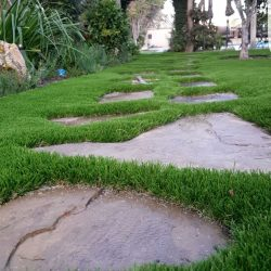 Image of turf backyard with overarching entranceway