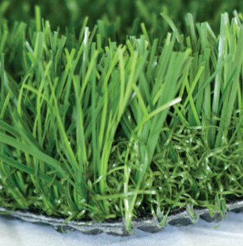 Image of Marquee Turf Sample