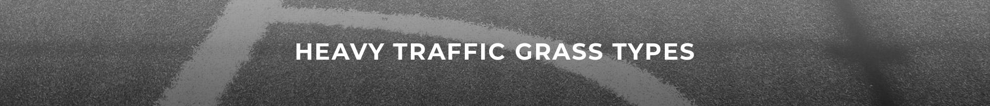 Header Image of Heavy Traffic Grass Types