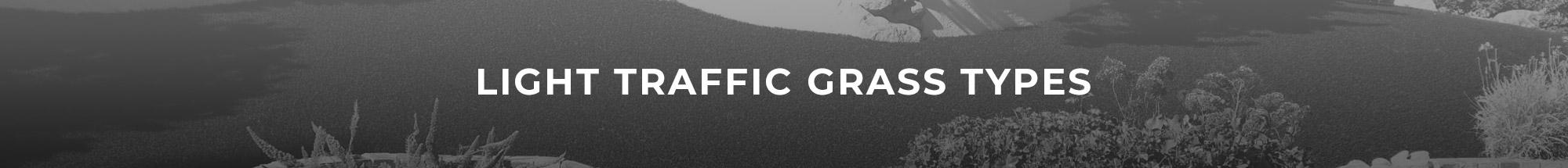 Header Image of light traffic grass types