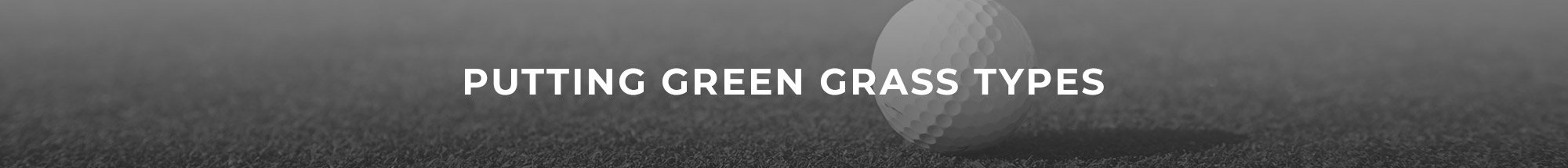 Header Image of Putting Green Grass Types