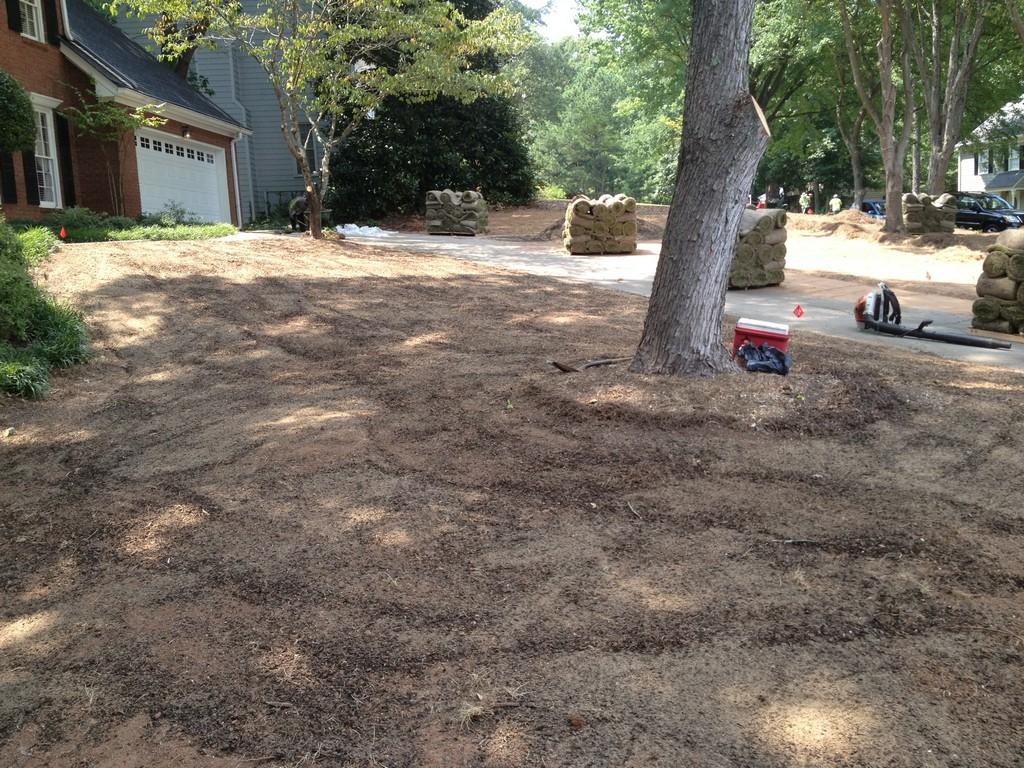 Sod Installation Atlanta   Grass Installation Buford   Lawn