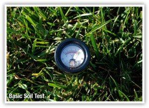 soil_test_3-300x217