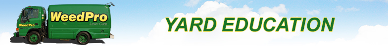 yard-education-banner