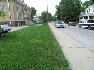 Nice Green Yard