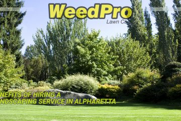 Landscaping Service in Alpharetta Benefits