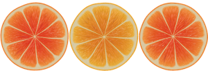 orange-1154559__180-300x103