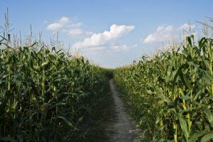 farm loans duluth