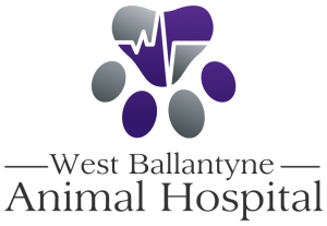West Ballantyne Animal Hospital