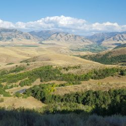 Mountain Landscape Lookout at Guided Hunting Ranch