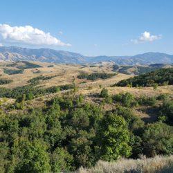 Beautiful Open Range Landscape 2