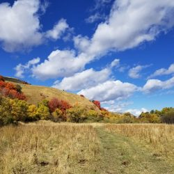 Beautiful Blue Skies on Fall Afternoon at Remote Guided Elk Hunt Retreat
