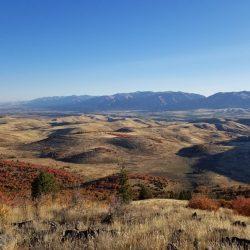 Fall Colors Sprinkle Mountain Range on Guaranteed Turkey Hunt