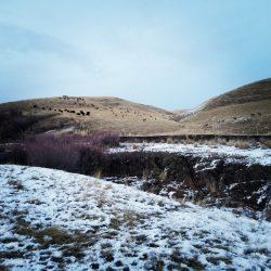 Snowy Morning on Trail for Utah Guided Elk Hunt