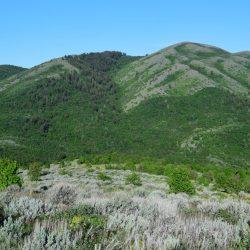 Grassy Mountain View at Guaranteed Hunt Ranch