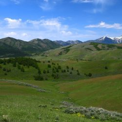 Snow Capped Mountain Range and Green Grassy Hills Overlook