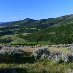 Beautiful Outlook of Valley at Utah Private Elk/Bison Hunting Ranch