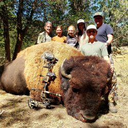 Bison hunting in Utah