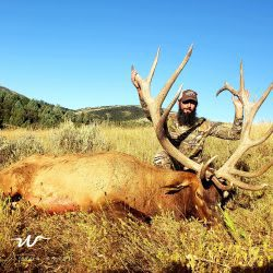 Man Hold The Antlers Of Trophy Elk | West Canyon Ranch