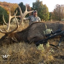 Hunter Uses High-Powered Rifle To Take Down Massive Elk | West Canyon Ranch