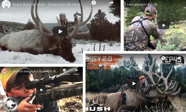 Hunting Big Bull Elk | Kill Shots | West Canyon Ranch