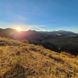 Guided Hunting In The Utah Mountains | West Canyon Ranch