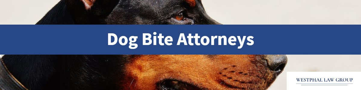 Dog Bite Attorneys San Diego