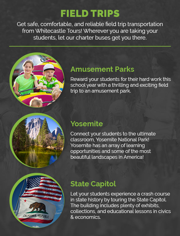 ynseinfographic2
